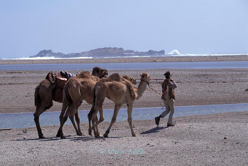 Benedict Allen on his journey through the Namib desert, Skeleton Coast, Namibia; passing through the Diamond COast region.