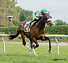Cash Crop winning at Delaware Park on 9/24/14