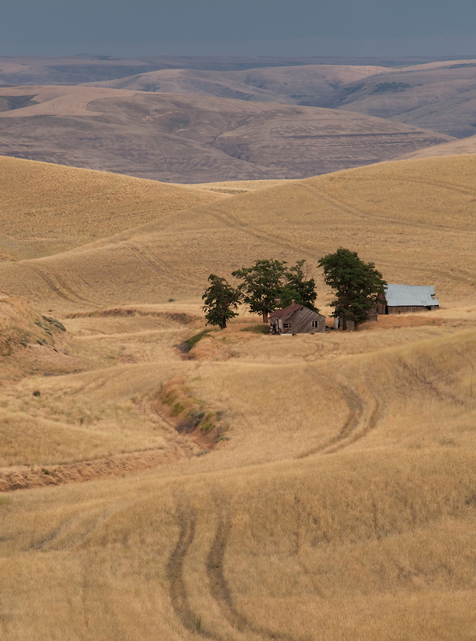 A homestead from years past sits nestled in the hills of the Washington State Palosue.