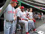 6 June 2010: Cincinnati Reds' Manager Dusty Baker (sitting) watches play during a game against the Washington Nationals at Nationals Park in Washington, DC. The Reds edged out the Nationals 5-4 in a ten inning game. Mandatory Credit: Ed Wolfstein Photo