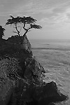 """Only the Lonely"" Black and White. 17 Mile Drive- Pebble Beach, California.  The famous Lone Cypress Tree on the Pacific Ocean with the waves crashing into the coastline. I took this photograph and had to leave to pick some friends up at the airport in San Francisco.  The sunset colors eventually developed into the image titled ""Monet on Monterey"" ..... which I captured by pulling off the highway and racing to the beach just in time .... arghhhhh"