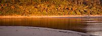 Sunset on beach with Kohaihai River and Nikau palms near Karamea, Kahurangi National Park, Buller Region, West Coast, New Zealand