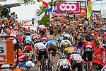 Peloton to the finish with Michal Kwiatkowski (POL) of Team Sky (GBR,WT,Pinarello) and Micheal Matthews (AUS) of Team Sunweb (GER,WT,Cerv&eacute;lo) during the 2019 La Fl&egrave;che Wallonne (1.UWT) with 195 km racing from Ans to Mur de Huy, Belgium. 24th April 2019. Picture: Pim Nijland | Peloton Photos/Cyclefile<br /> <br /> All photos usage must carry mandatory copyright credit (Peloton Photos/Cyclefile | Pim Nijland)