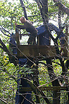 Gaz, one of a group of campaigners and residents of the Nine Ladies protest camp at Stanton Lees, near Matlock in Derbyshire, pictured at the camp in the Derbyshire Dales dismantling one of the abandoned tree houses. The ancient woodland and Nine Ladies stone circle were threatened by a proposed quarry near the site. Following a nine year campaign by protesters the quarry proposal has now been rejected, and the camp will soon be dismantled and vacated.