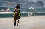 September 3, 2020: Storm the Court exercises as horses prepare for the 2020 Kentucky Derby and Kentucky Oaks at Churchill Downs in Louisville, Kentucky. The race is being run without fans due to the coronavirus pandemic that has gripped the world and nation for much of the year. Scott Serio/Eclipse Sportswire/CSM