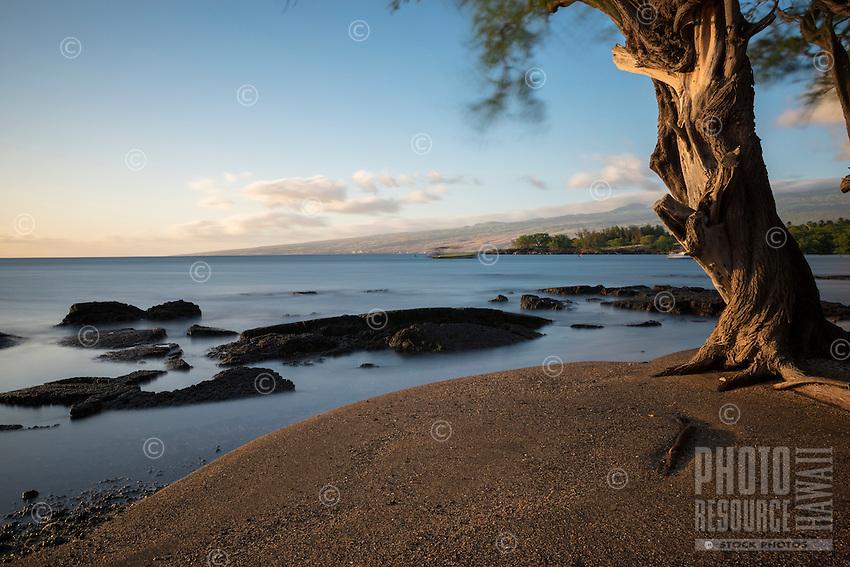 Sunset casts a gentle glow on a kiawe tree and shoreline at Puako Bay, Kohala Coast, Big Island.