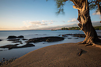 Sunset casts a gentle glow on a kiawe tree and shoreline at Puako Bay, Kohala Coast, Big Island.