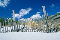 USA Newport, RI - Dune fences along Gooseberry beach.