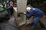 """Foto: VidiPhoto<br /> <br /> ARNHEM – Dierentransporteur Ton van Maanen probeert vrijdag een aardvarken van Burgers' Zoo in een transportkist te krijgen. Op 6 januari bereikt de 64-jarige Arnhemmer een bijzondere mijlpaal: hij is op die datum officieel vijftig jaar werkzaam voor Koninklijke Burgers' Zoo. Van Maanen heeft het Arnhemse dierenpark naar eigen zeggen zien ontwikkelen """"van dierentuin tot zoo"""". Hij heeft alle grote nieuwbouwprojecten meegemaakt en tientallen bijzondere diersoorten vervoerd door heel Europa.  Zo kwam hij eens hondsberoerd in Arnhem aan, nadat hij bij Zoo Antwerpen een ijsbeer had ingeladen voor transport. Het honderden kilo's zware roofdier schommelde de hele reis van links naar rechts en van voren naar achteren, waardoor Van Maanen flink wagenziek was toen hij eindelijk weer in de Gelderse hoofdstad arriveerde. In zijn vijftigjarige dienstverband heeft Van Maanen als transporteur met zijn vrachtwagens, bestelbussen en overige bedrijfsvoertuigen letterlijk honderdduizenden kilometers voor de Arnhemse dierentuin afgelegd. Toch zijn de bekeuringen die hij in al die jaren heeft ontvangen op één hand te tellen. Op 6 maart 2019 viert Ton van Maanen zijn 65ste verjaardag en hoopt hij nog bijna twee jaar tot aan zijn pensioen bij Burgers' Zoo in deze functie te werken."""