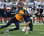Althoff's Jason Blackmon (left) breaks up a pass to Mater Dei wide receiver Mitchell Haake. Mater Dei played football at Althoff on Friday September 13, 2019. <br /> Tim Vizer/Special to STLhighschoolsports.com