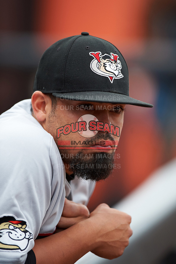 Tri-City ValleyCats catcher Richard Gonzalez (11) in the dugout before a game against the Aberdeen Ironbirds on August 6, 2015 at Ripken Stadium in Aberdeen, Maryland.  Tri-City defeated Aberdeen 5-0 in a combined no-hitter.  (Mike Janes/Four Seam Images)