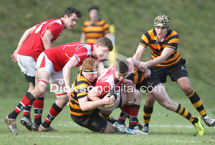 SCHOOLS CUP 2015  | Saturday 7th February 2015<br /> <br /> John Dickson tackles Taylor Nutt during the third round of the 2015 Ulster Schools Cup between RBAI and Regent House at Osborne Park, Belfast.<br /> <br /> Picture credit: John Dickson / DICKSONDIGITAL