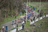 Peloton on the Broekstraat Cobbles<br /> <br /> 105th Scheldeprijs 2017 (1.HC)<br /> 1day race: Mol &gt; Schoten 200km