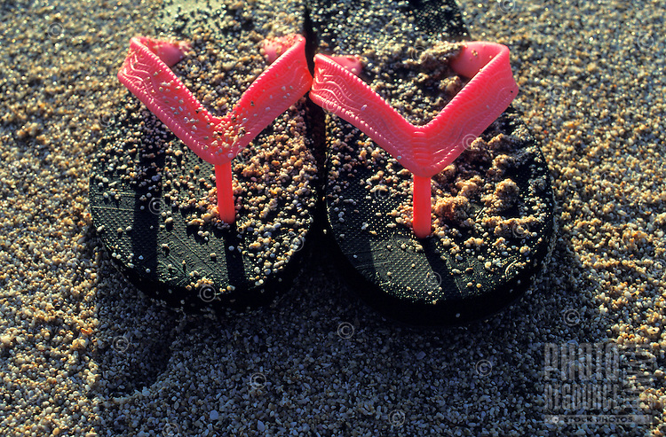 Rubber slippers commonly seen being worn at the beach