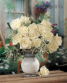 Interlitho, Alberto, FLOWERS, photos, white roses, vase(KL15879,#F#)