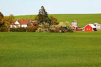 A barn and other buildings on farmland near Ritzville, Eastern Washington