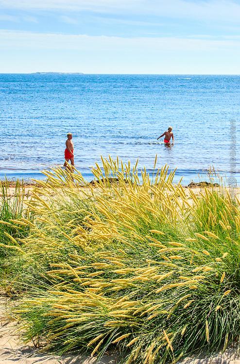 Barn badar på en sandstrand vid havet på Nåttarö i Stockholms skärgård