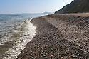 Shingle beach site in Devon chosen for release of captive bred Scaly Crickets (Pseudomogoplistes vicentae). Devon, UK. June.