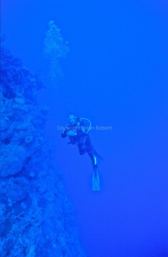 plongée sur les tombants de corail noir11 de maria la Gorda à l'ouest de Cuba