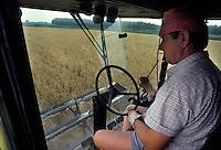 Calvatone, Cremona, IRIS Bio - cooperativa per l'agricoltura biologica. Mietitura.<br /> Calvatone, Cremona, IRIS Bio - cooperative for organic farming. Harvest.