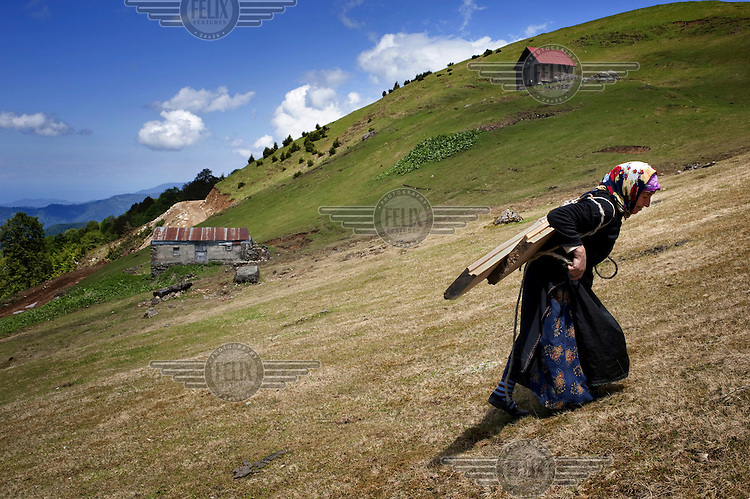 A Laz woman strains under the weight of wooden planks that she is carrying over a hill to be used to build a house. The Laz are a Caucasian ethnic group living on the Black Sea coastal regions of Turkey and Georgia.