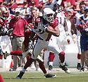 NFL 2008