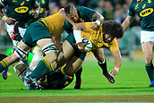 9th September 2017, nib Stadium, Perth, Australia; Supersport Rugby Championship, Australia versus South Africa; Tatafu Polota-Nau of the Australian Wallabies gets held up in a tackle by the South African defence