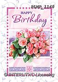 Marek, FLOWERS, BLUMEN, FLORES, photos+++++,PLMP1148,#f#, EVERYDAY ,roses