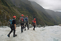 Tourist group of Ice climber walking on Franz Josef Glacier, New Zealand
