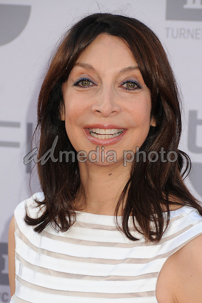 4 June 2015 - Hollywood, California - Illeana Douglas. AFI 43rd Life Achievement Award Gala Tribute To Steve Martin held at the Dolby Theatre. Photo Credit: Byron Purvis/AdMedia