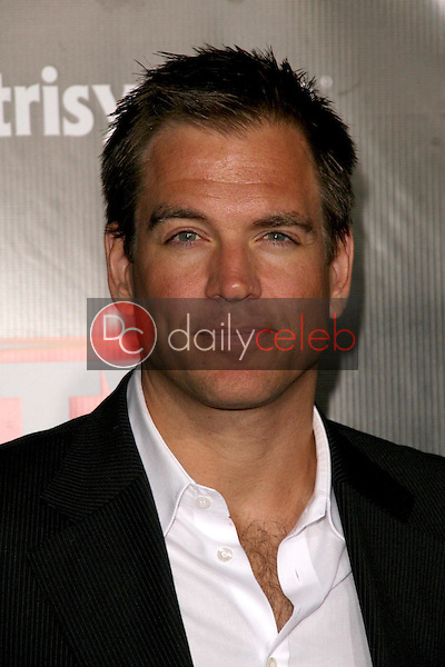 Michael Weatherly<br />