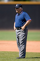 Umpire Steve Lutz works the bases during a Carolina League game between the Potomac Nationals and the Winston-Salem Dash at Wake Forest Baseball Park May 10, 2009 in Winston-Salem, North Carolina. (Photo by Brian Westerholt / Four Seam Images)