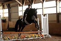 Suellen Copeland, Margie Gayford Clinic, Skyland Stables, Horse