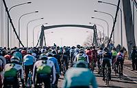 Omloop Het Nieuwsblad 2018<br /> Gent &rsaquo; Meerbeke: 196km (BELGIUM)