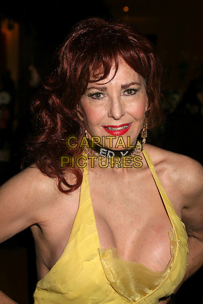 EDY WILLIAMS.The 44th Annual ICG Publicists' Awards at the Beverly Hilton Hotel, Beverly Hills, California, USA..February 7th, 2007.headshot portrait yellow halterneck dress sheer cleavage choker necklace earrings red lipstick.CAP/ADM/BP.©Byron Purvis/AdMedia/Capital Pictures