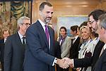Prince Felipe if Spain attends an audience for Tarragona Mayor, JOSEP FÉLIX BALLESTEROS CASANOVA, and 2017 Mediterranean Games representatives at Zarzuela Palace in Madrid, Spain. December 09, 2013. (ALTERPHOTOS/Victor Blanco)