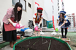 Akihabara maids pour water on a rooftop garden at the Japan Agricultural Newspaper building in Akihabara on June 15, 2016, Tokyo, Japan. The annual event organised by NPO group Licolita sees maids and volunteers from local cafes and stores joining the Akihabara Vegetable Garden Project. This year 7 Akihabara maids planted habanero, peppermint, bhut jolokia and coriander. (Photo by Rodrigo Reyes Marin/AFLO)