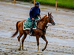 September 2, 2020: Tiz The Law exercises as horses prepare for the 2020 Kentucky Derby and Kentucky Oaks at Churchill Downs in Louisville, Kentucky. The race is being run without fans due to the coronavirus pandemic that has gripped the world and nation for much of the year. Scott Serio/Eclipse Sportswire/CSM