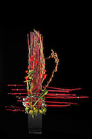 Dramatic flower arrangement of red gladiolas created by floral artist Tomasi Boselawa
