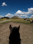 A view from a horse while horseback riding in Cusco Peru