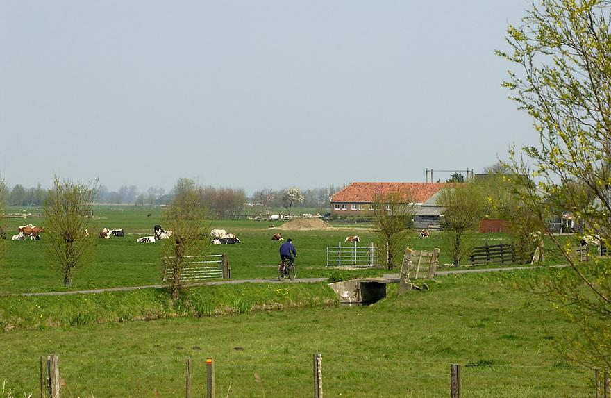 Nederland, omgev. Delft/ Schiedam, 10 april 2002..Groene Hart van Nederland. Zouteveense Polder..Landschap met weiland, koeien en boerderij, fietser..Foto (c) Michiel Wijnbergh/Hollandse Hoogte