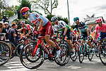 The peloton climb Mur de Huy on the first ascent during the 2019 La Fleche Wallonne, Belgium, 24 April 2019, Photo by Thomas van Bracht / PelotonPhotos.com/Cyclefile