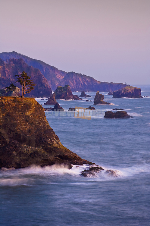 Sea stacks on southern Oregon coast.