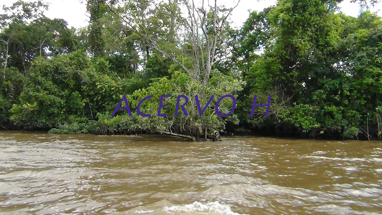 Bacia do rio Aurá contaminada pelo extinto lixão, desimboca.<br /> Belém Pará Brasil.<br /> Foto; Arlan Conceicao.