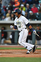 Second baseman Luis Carpio (18) of the Columbia Fireflies bats in a game against the Augusta GreenJackets on Opening Day, Thursday, April 6, 2017, at Spirit Communications Park in Columbia, South Carolina. Columbia won, 14-7. (Tom Priddy/Four Seam Images)