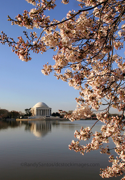 Jefferson Memorial Washington DC<br /> The Jefferson Memorial is a presidential memorial, located on the Tidal Basin in Washington, D.C.. Dedicated to American Founding Father Thomas Jefferson architecture includes circular marble steps, a portico, a circular colonnade of Ionic order columns, and a shallow dome. The interior includes a statue of Thomas Jefferson and excerpts from the Declaration of Independence. A popular Washington DC tourist attraction, especially in Spring during the blooming of the Cherry Blossoms.