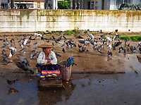 Pigeon and a street vendor at the whole sale vegetable Market in Yangon, Myanmar, Burma
