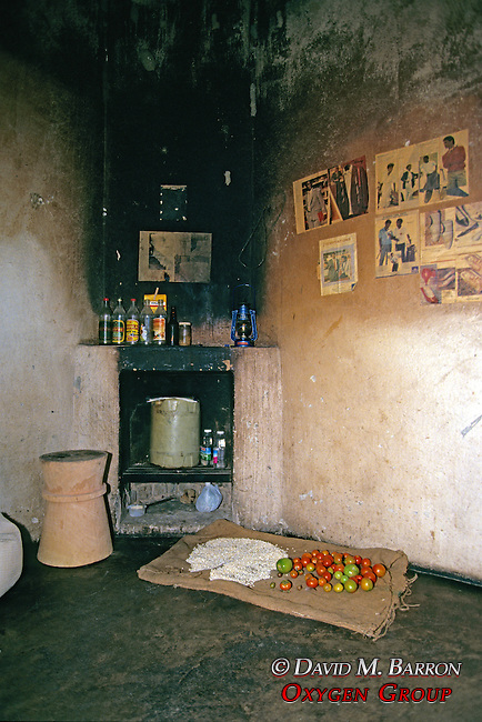 Inside the Local Home