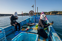 Japan, Mie Prefecture, Osatsu, Toba City. Women Ama free divers. Once pearl divers, they now collect seaweed, conch, lobster, shellfish. On the boat for their dive, they wear white hoods for good luck, symbolic of the Ama divers. Model released
