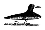 Hoffnung's Menagerie. (An ocarina transformed into a bird)